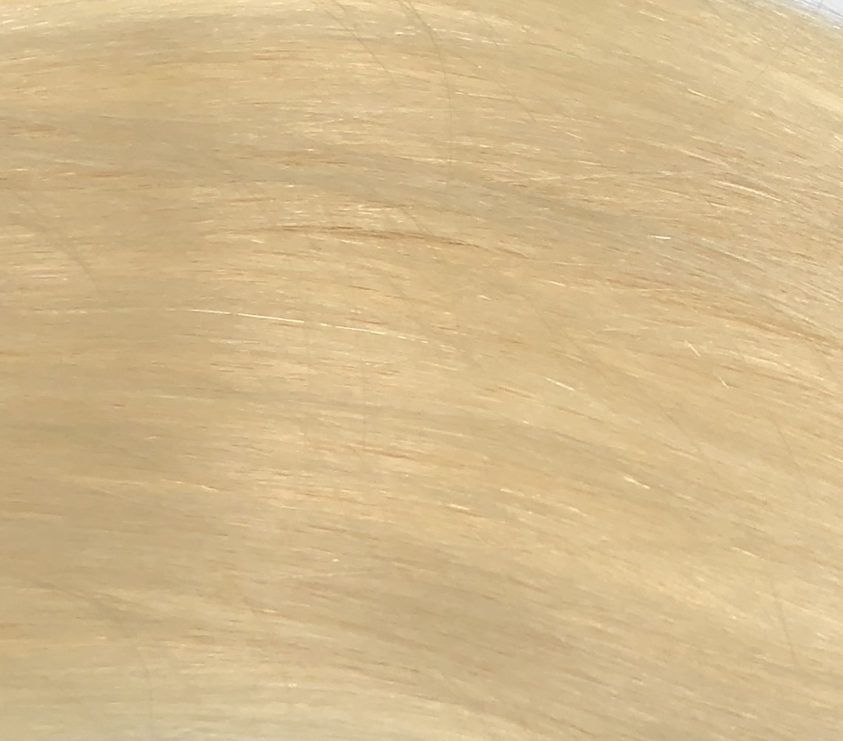 Hair Extensions Quality Tape In Color 60 Jacksonville Florida Fast